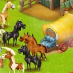 Pferde - Kutsche