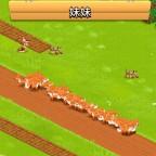 Wieder so viele Füchse